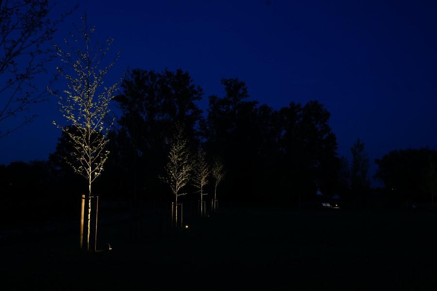 Beelen en Geboers - nachtfoto